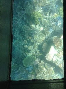 glass-boat-4