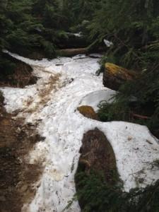 kumotori-snow