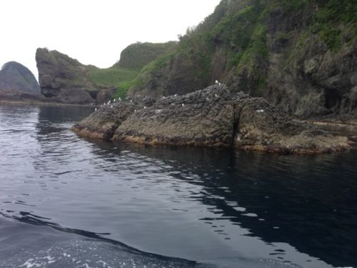 shakotan-island-3